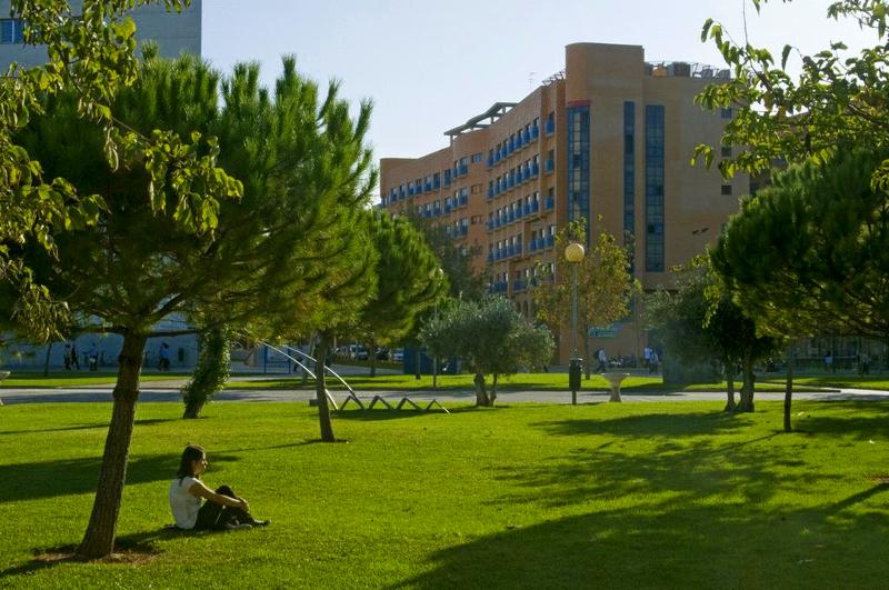 Zakwaterowanie w internacie na kampusie na obozie językowym w Walencji