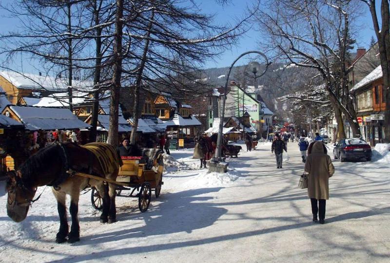 Zimowe kolonie językowe angielski Zakopane